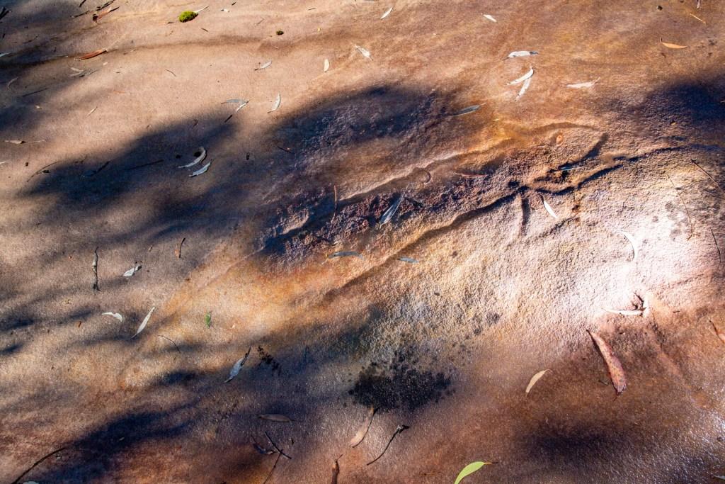 AWAT9979 LR Cotton Tree Creek engraving site