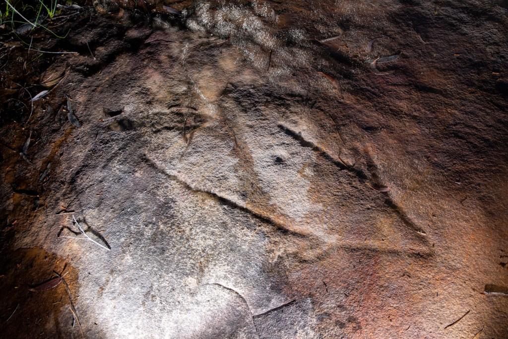AWAT9985 LR Cotton Tree Creek engraving site