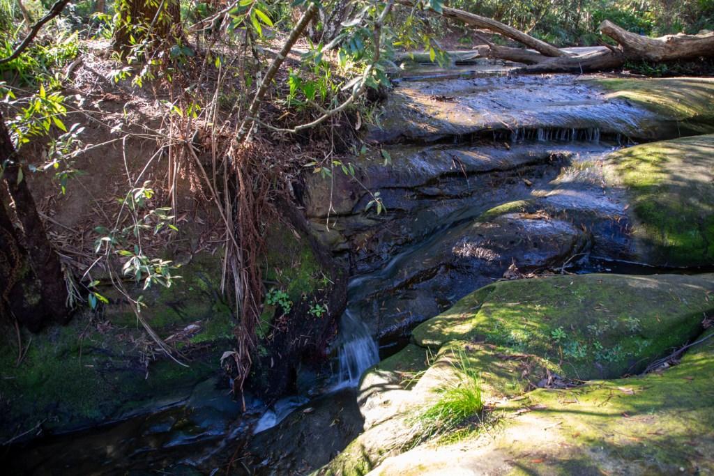 AWAT2456 LR Cooyong Neverfail Trail and Callamine Trail Loop