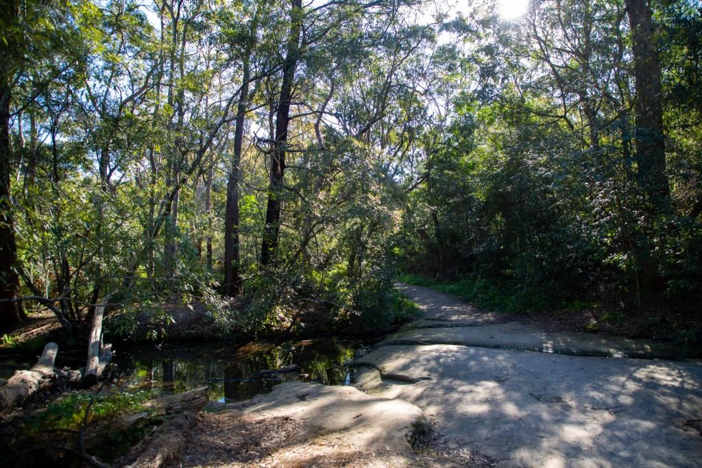 AWAT2460 LR Cooyong Neverfail Trail and Callamine Trail Loop