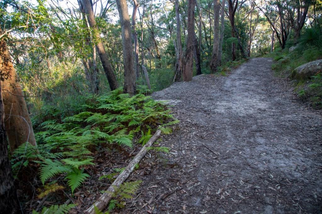 AWAT2465 LR Cooyong Neverfail Trail and Callamine Trail Loop