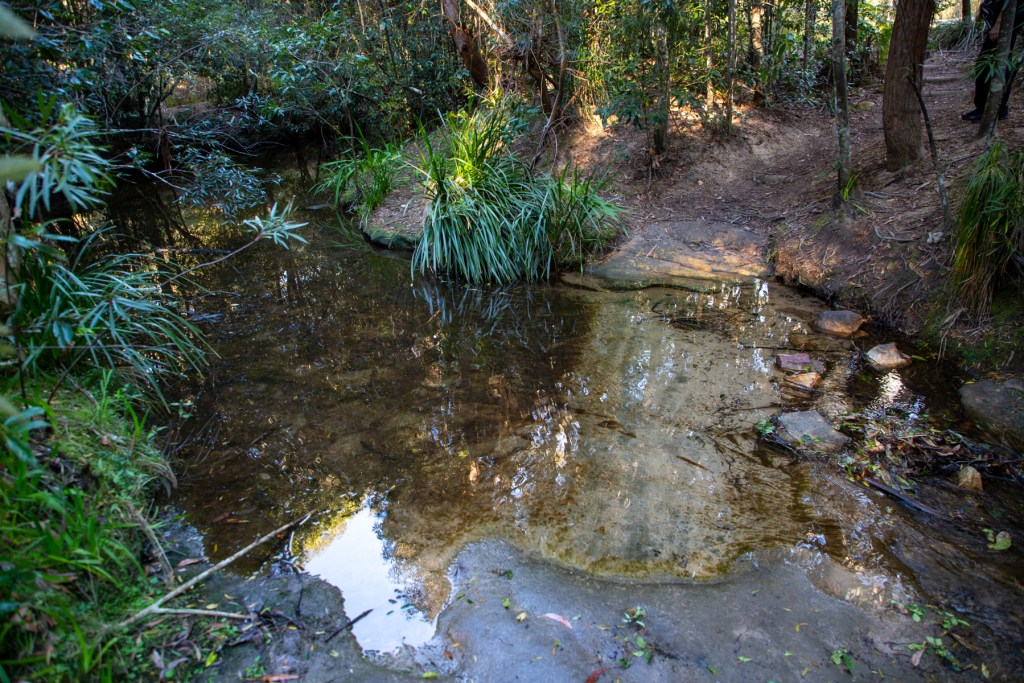 AWAT2495 LR Cooyong Neverfail Trail and Callamine Trail Loop