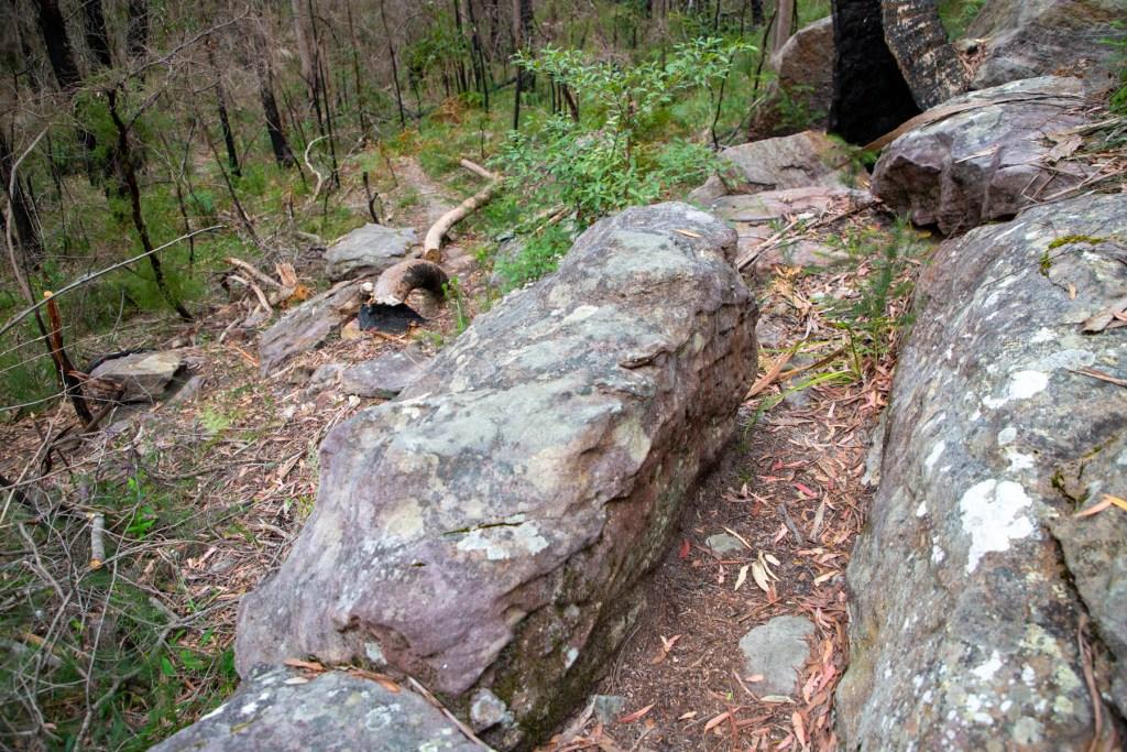 AWAT2817 LR 1 Twin Creeks Reserve - a short but interesting loop walk