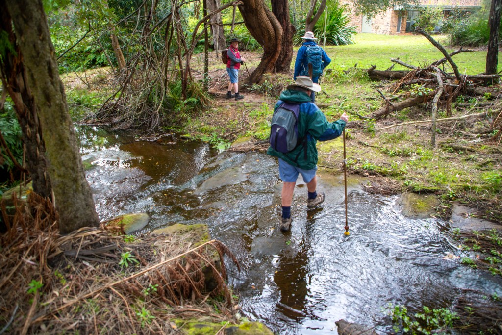 AWAT3547 LR Exploring Mullet Creek in Irrawong Reserve