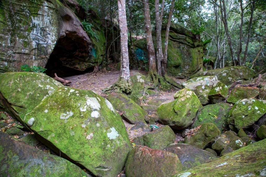 AWAT3612 LR Exploring Mullet Creek in Irrawong Reserve