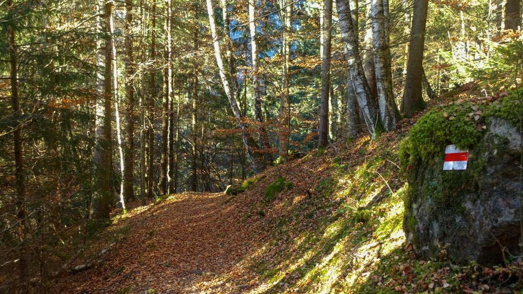 DSC02537 LR Descending into Les Gorges Mystérieuses de la Tête-Noire