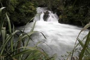 Kaituna Falls