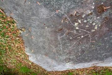 IMG 3292 LR Daleys Point Aboriginal Site