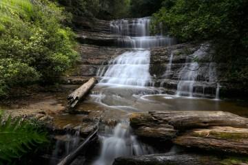 MG 2410 LR Lady Barron Falls (Mount Field)