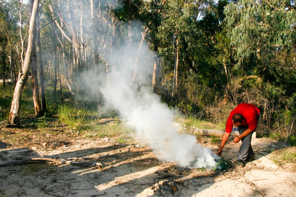 MG 9951 LR Finchley Aboriginal Site
