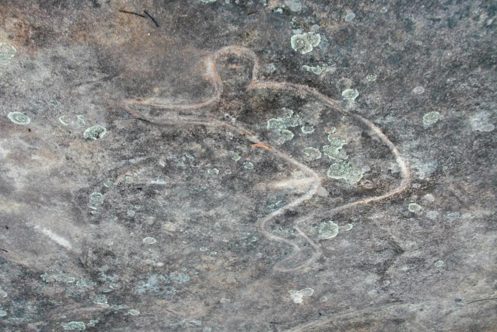 MG 9959 LR Finchley Aboriginal Site