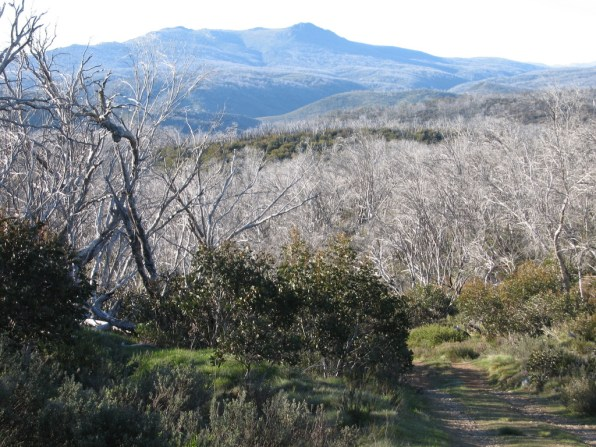 Round Mountain Trail