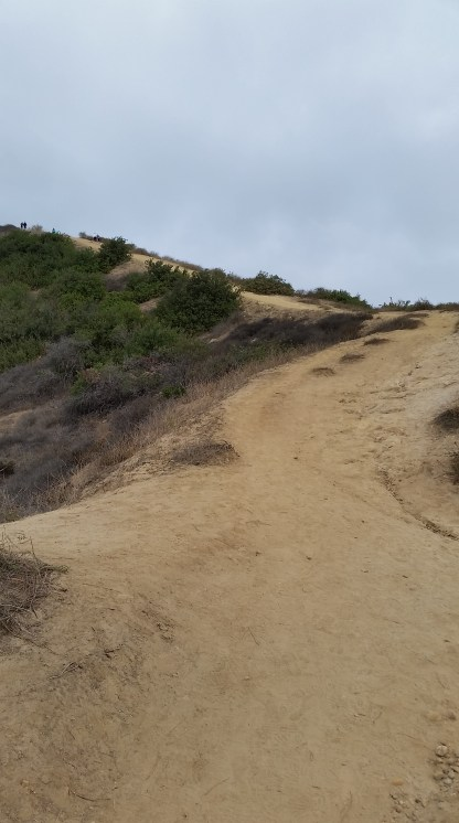 Tackling the hills in the first mile or so