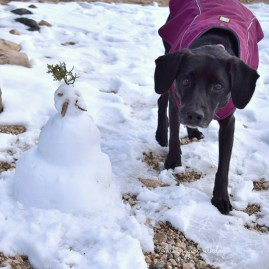 Never seen snow or snowman before. Her face says it all.
