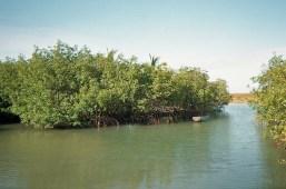 Trancoso, Bahia 1997.