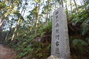 熊野古道 中辺路を歩くために必要なこと 準備や日程など