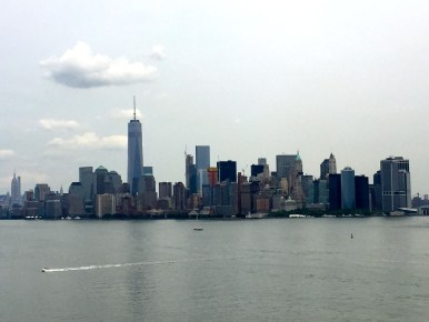 View of NYC from the Pedestal