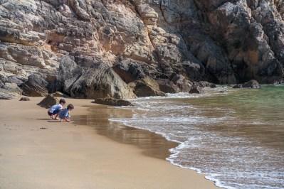 #beachcombers