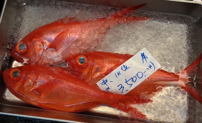 #freshfish
