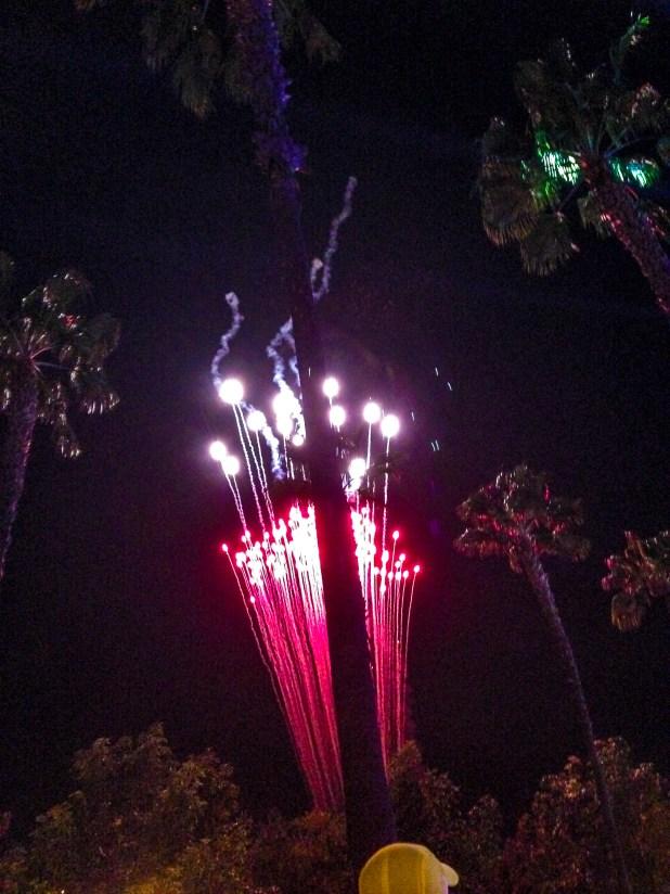 Disneyland Races-7246