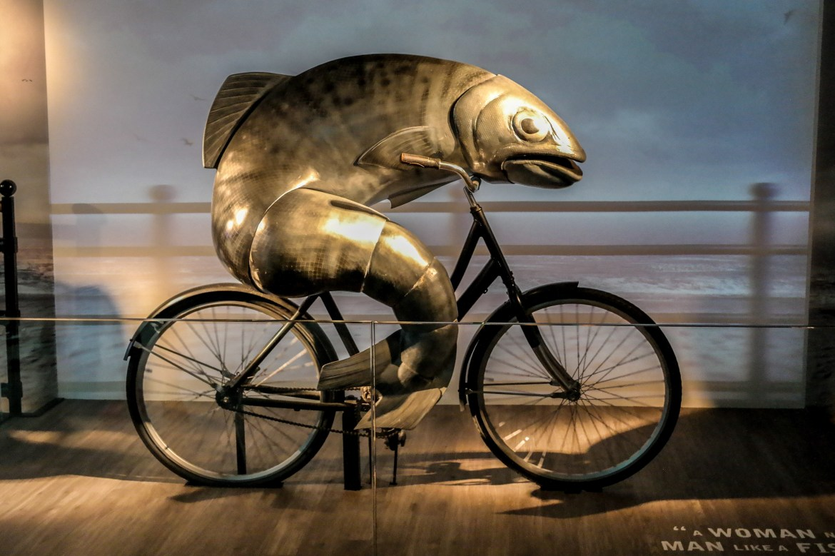 #fishonabicycle