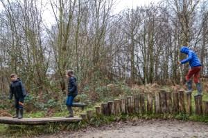 Ashdown Forest AKA 100 Aker Wood England