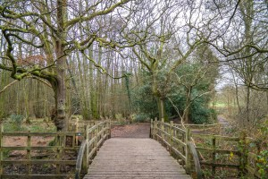 Poohsticks Bridge Ashdown Forest