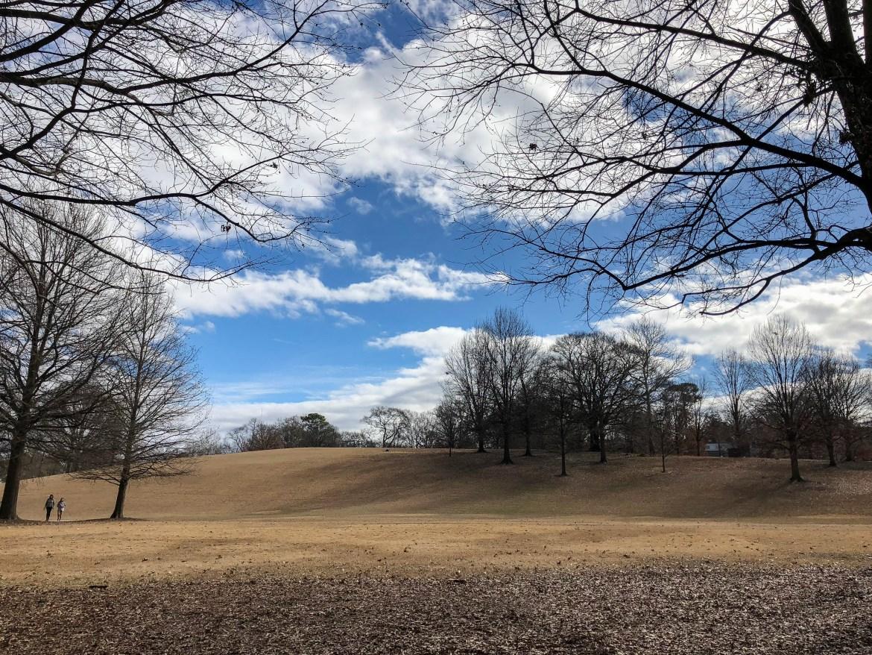 #piedmontpark The BeltLine Atlanta Georgia