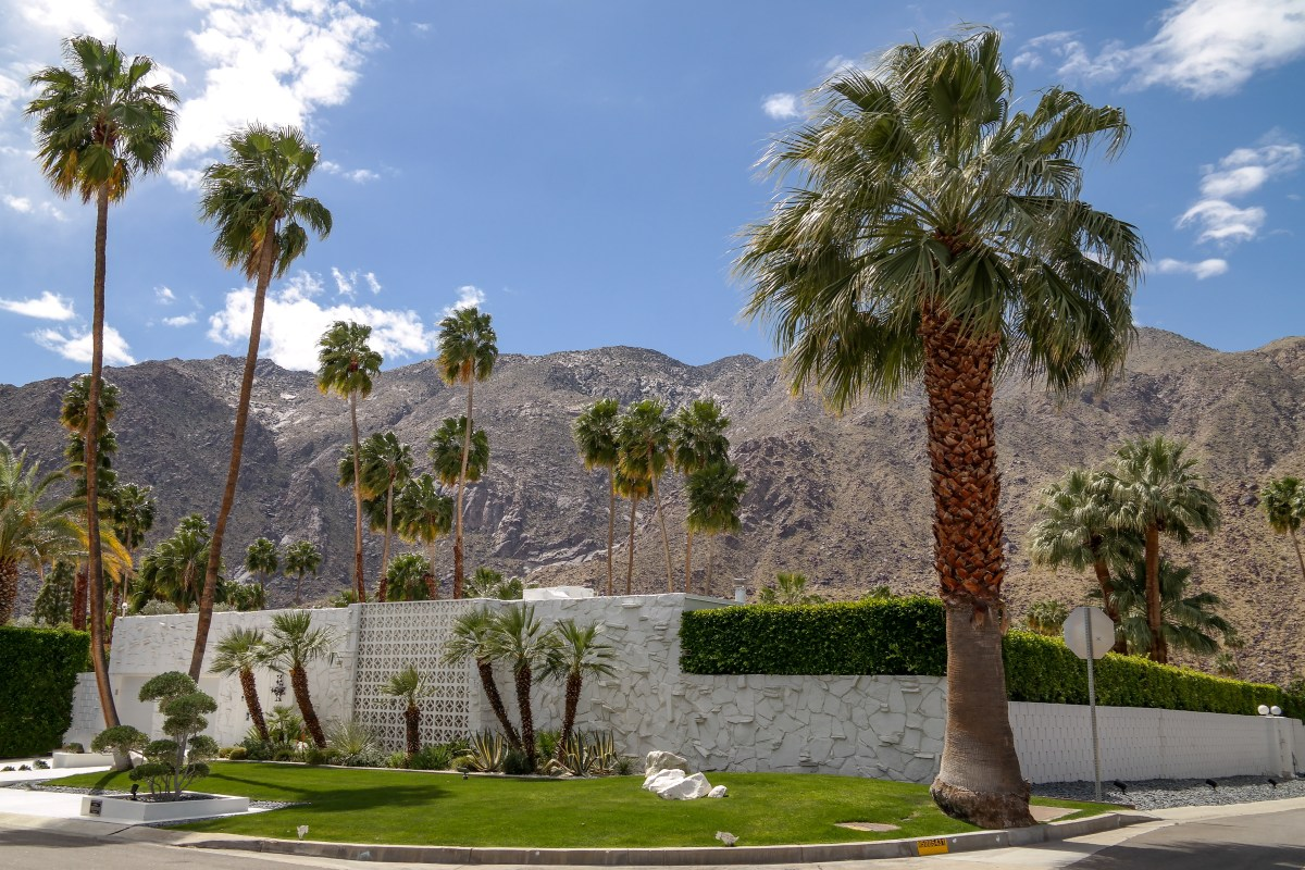 Palm Springs Art, Architecture & More