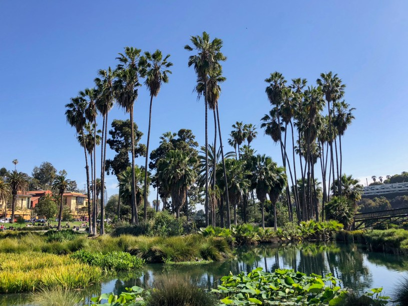 Echo Park Lake Echo Park Los Angeles California #echoparkwithkids #lawithkids #familytravel