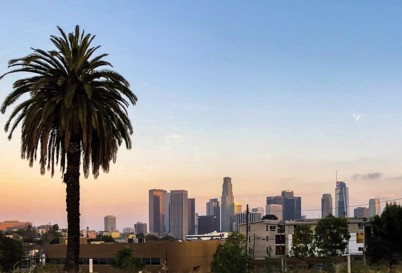 #losangeleswithkids Downtown Los Angeles Skyline View