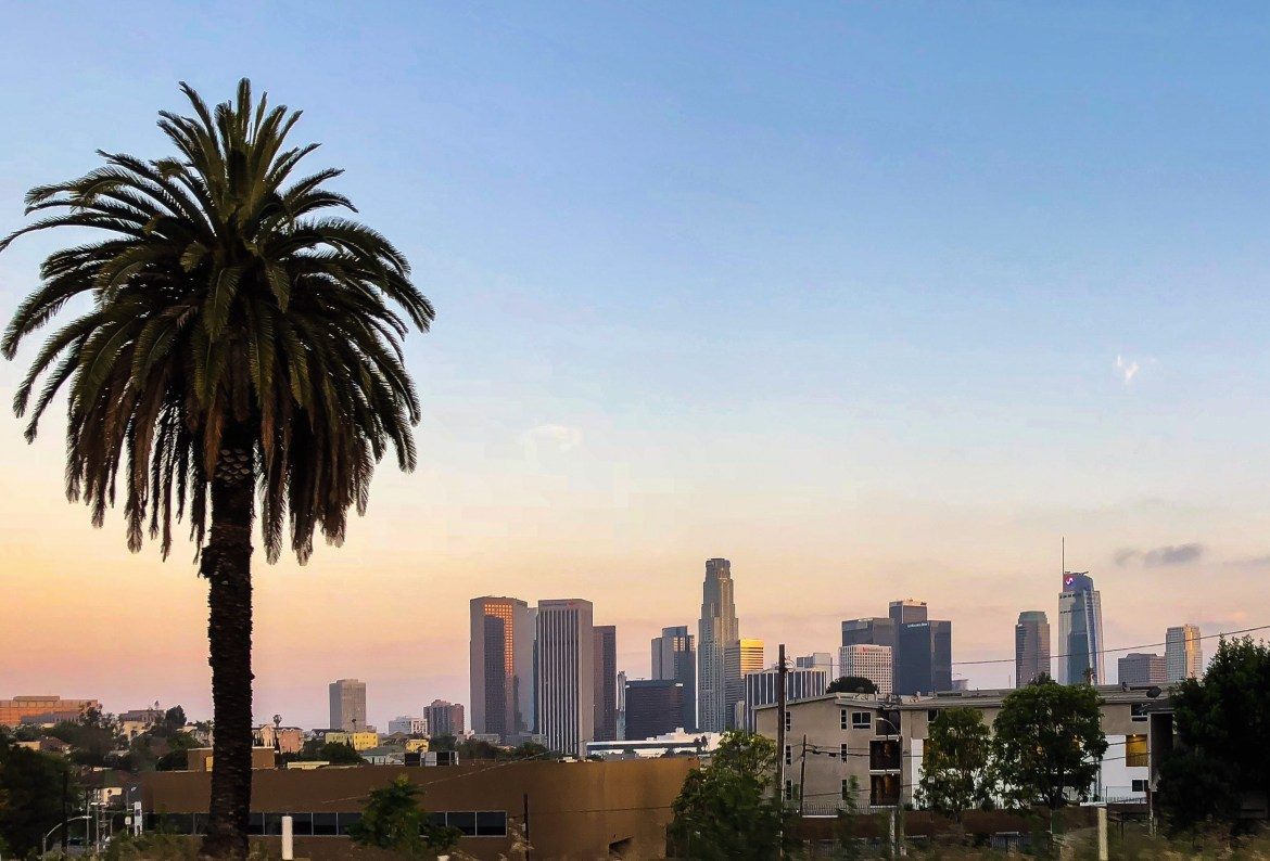 #losangeleswithkids Downtown Los Angeles Skyline View