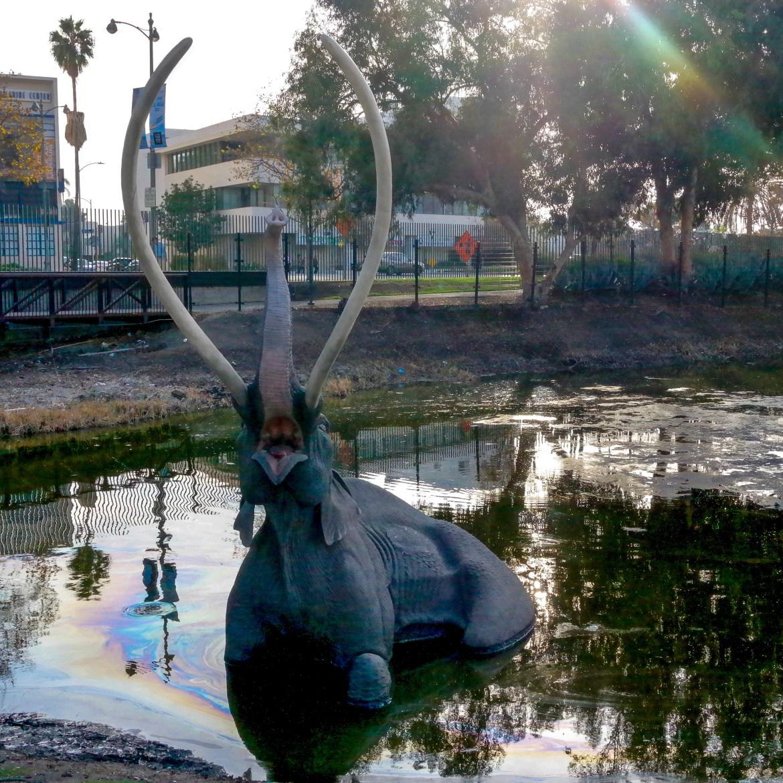 The La Brea Tar Pits Los Angeles California