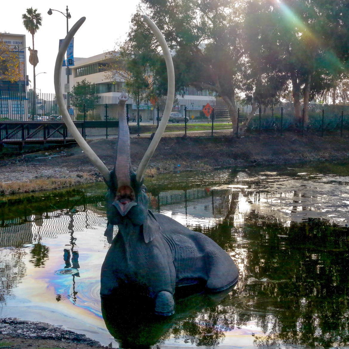 The La Brea Tar Pits Los Angeles California