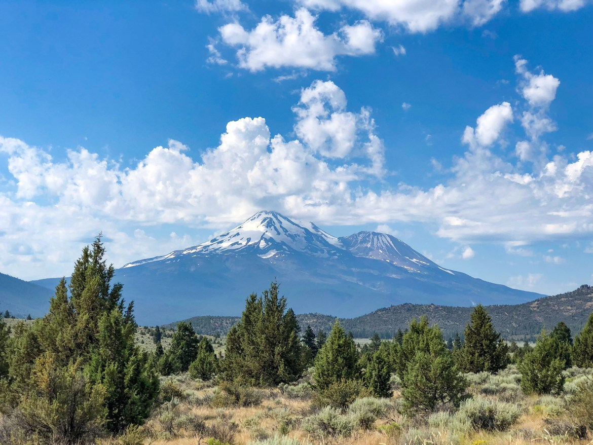 Mount Shasta Weed California