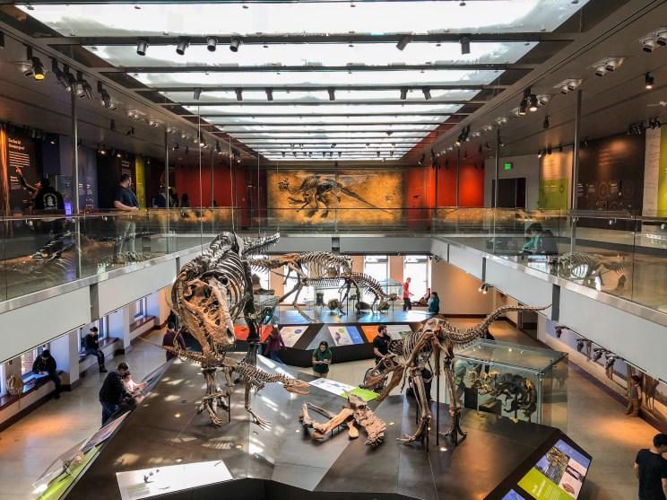 Natural History Museum Los Angeles California