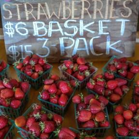 Swanton Berry Farm Pescadero California West Coast Road Trip