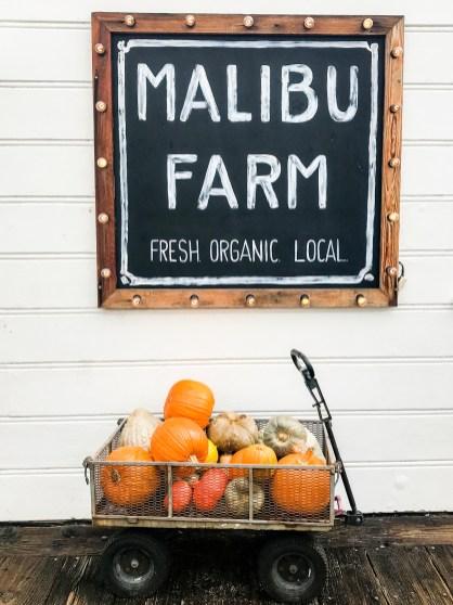 Malibu Farm Malibu California