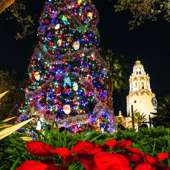 #disneychristmas California Adventure Holiday Disneyland California