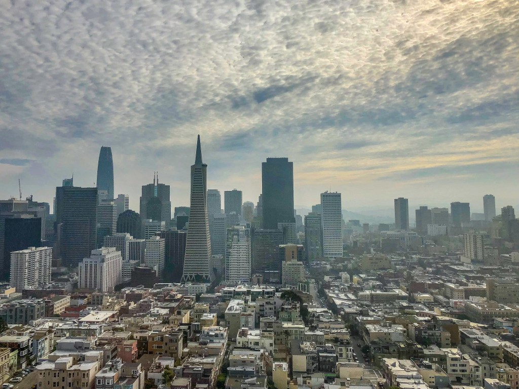 View from the Coit Tower San Francisco #coittower