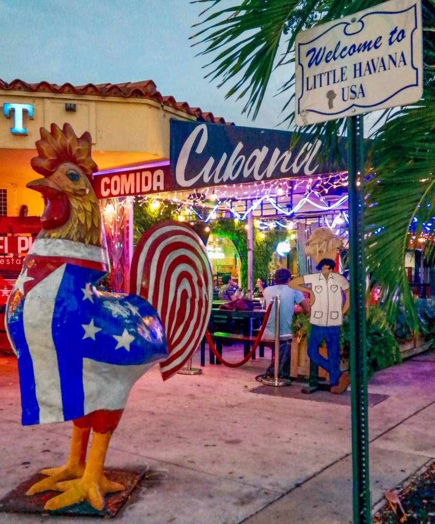 Little Havana Rooster Miami Florida