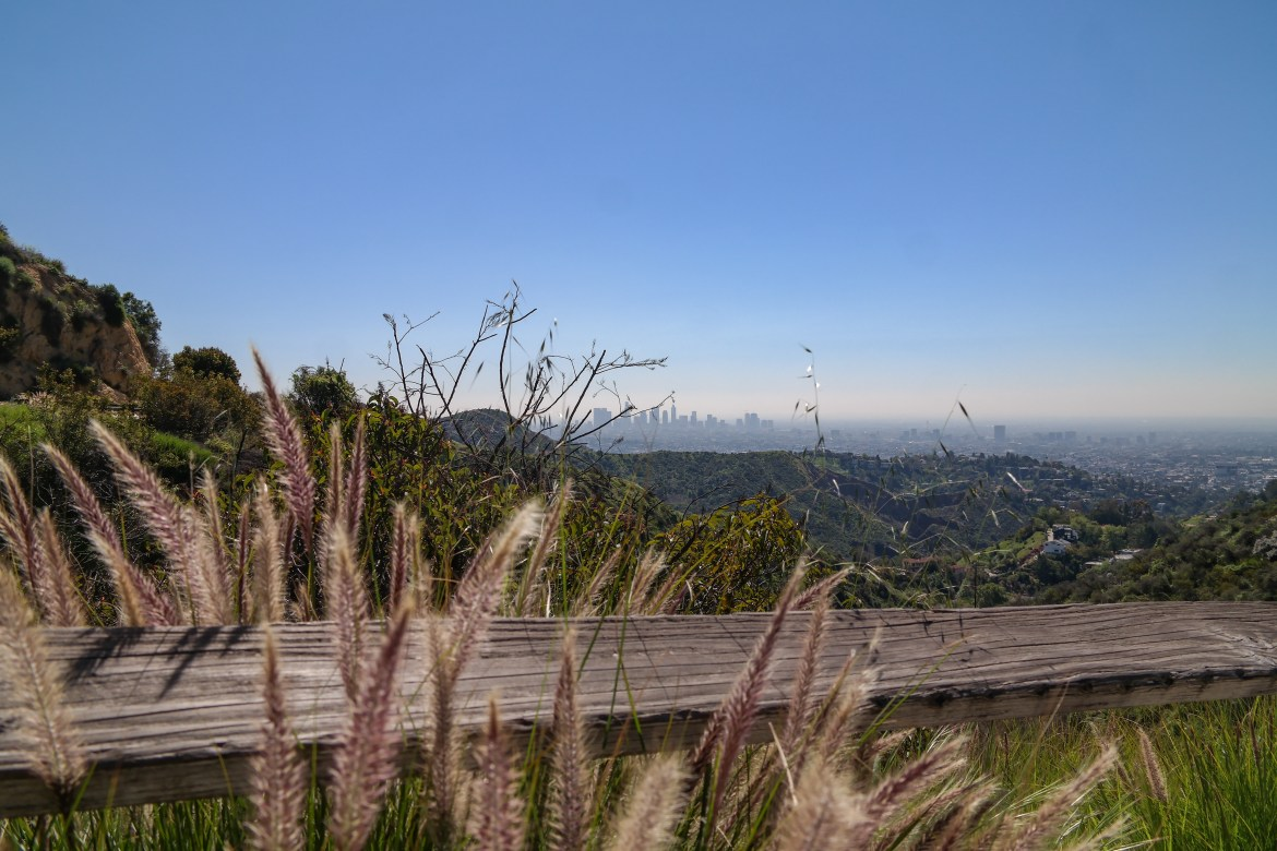 Hollywood Sign Griffith Park Los Angeles California #hollywoodsignhike