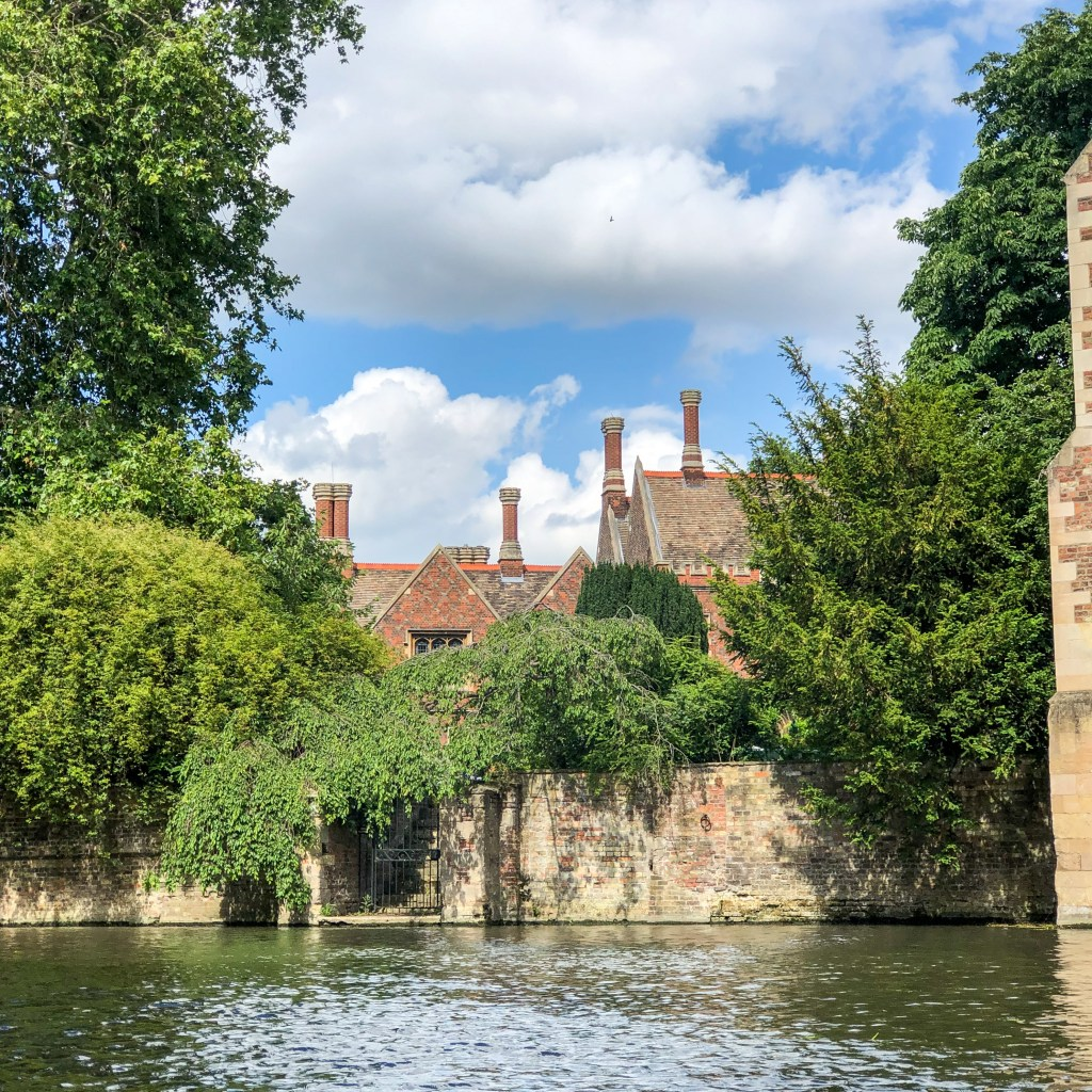 Punting on The River Cam Cambridge England 2019-8566
