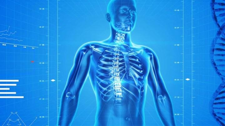 Tag der Rückengesundheit am 15. März: Gegen Rückenschmerzen helfen Muskeln