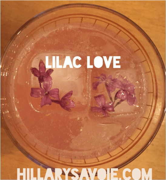 Lilac Love: A Gin and Lilac Simple Syrup Cocktail
