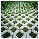 Grass-Block-Pavers