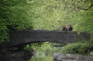 St. Stephen's Green bridge