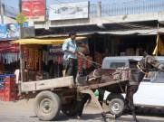 Donkey trailer