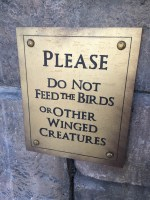 Please Do Not Feed the Birds or Other Winged Creatures