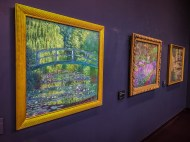Monet in the Orsay Museum